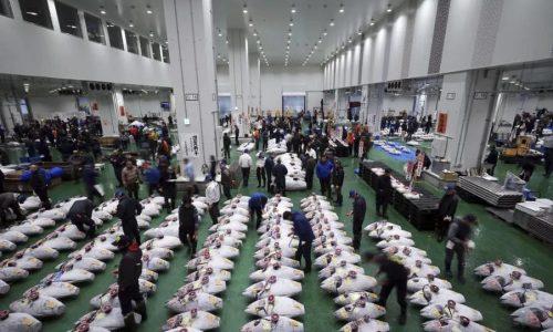 japans-markets